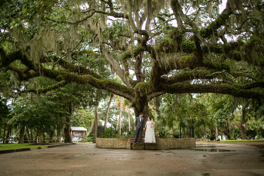 husband and wife standing under massive live oak tree with spanish moss in oaks by the bay park in st andrews florida