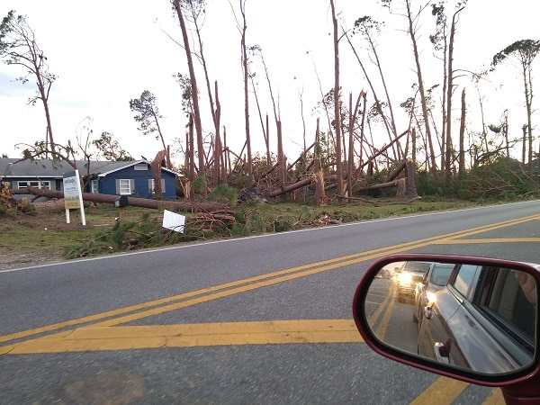 snapped and twisted pine trees damaged from Hurricane Michael with a house and side view mirror